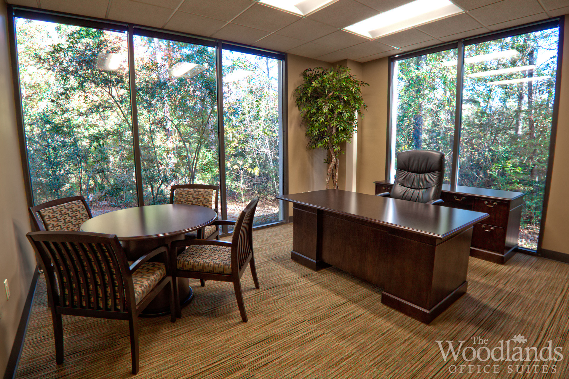 Corner Office Suites offer a spectacular view of The Woodlands