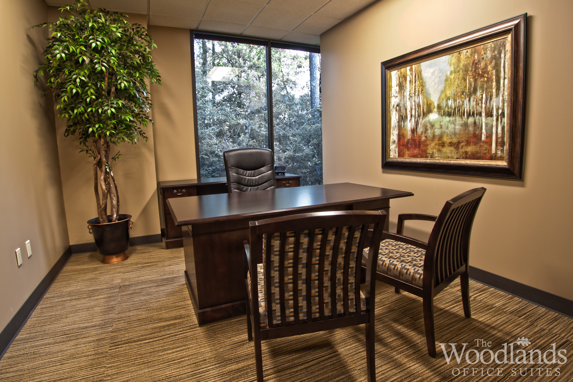 Photo gallery the woodlands office suites for Office pictures